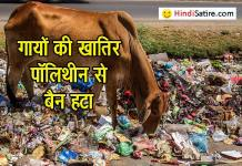 polythene-ban , polythene ban in MP , plastic carrybags ban, पॉलिथीन पर प्रतिबंध, cow death by eating polythene, hindi jokes, satire, cow eating polythene , हास्य व्यंग्य, हिंदी जोक्स