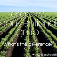 Organic/ Conventional/ GMO food - What's the Difference?