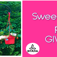 Sweet Summer prAna Giveaway