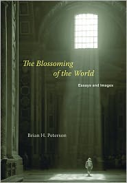 brian h. peteron's book cover in old building with sunlight shining in from rood