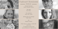 pushcart nomineed collage with winners names