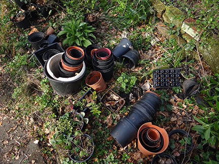 old plastic plant pots on our allotment