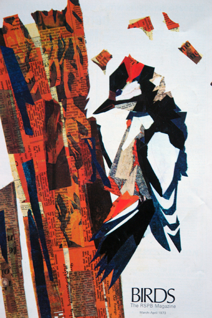 illustration of a greater spotted woodpecker made from coloured newsprint in a vintage 1970s RSPB magazine