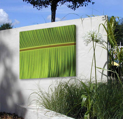 painted modern art canvas of a banana leaf on a whitewashed wall in a garden