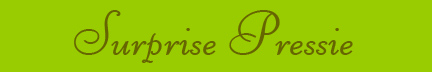 &quot;Surprise Pressie&quot; blog post banner