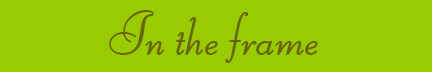 """In the Frame"" banner"