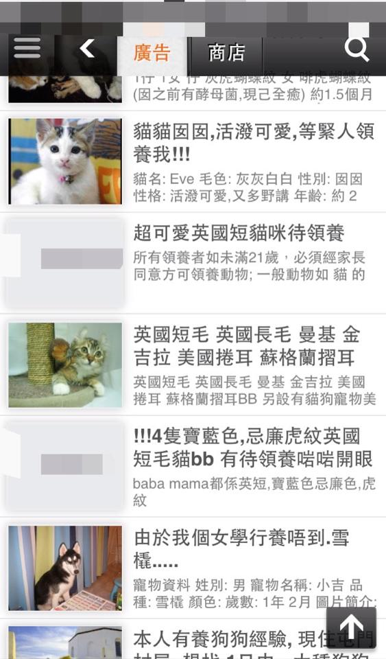 網上有許多私人繁殖商,假借領養為名買賣動物。 網上圖片