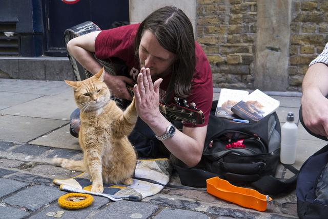 a-street-cat-named-bob-high-five