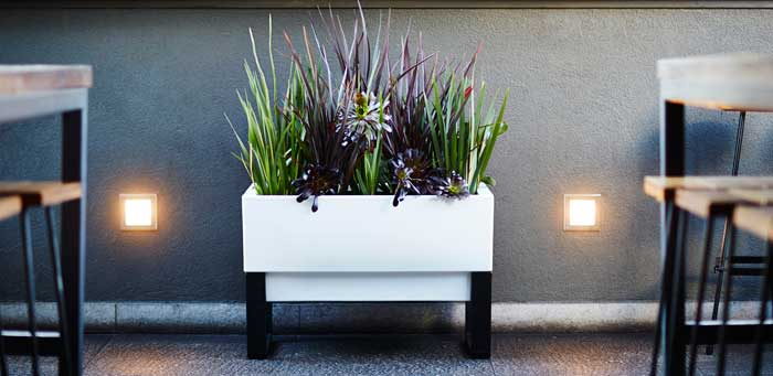 Glowpear-self-watering-Urban-Garden