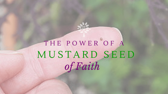 The Power of a Mustard Seed of Faith