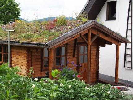 Blockhaus mit Dachbegrünung