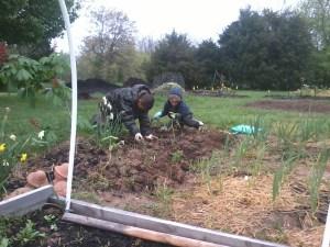 Boys in the Garden