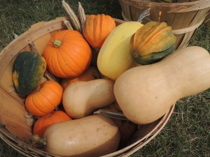 A Goodie Basket from Farmer to Farmer.
