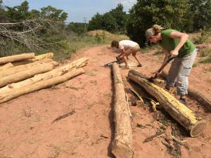 man woman skinning cutting logs for building their home