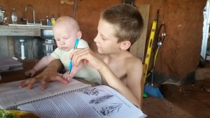baby brother and botany in a day