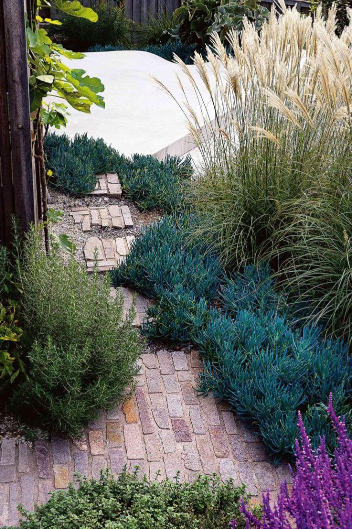 Coastal garden design ideas photos for your home for Small seaside garden designs
