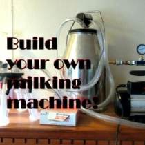 Milking-machine-featured-image