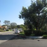 Westchester CA Community, Westchester CA Homes for Rent
