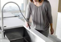 Align Pre-Rinse Spring Kitchen Faucet