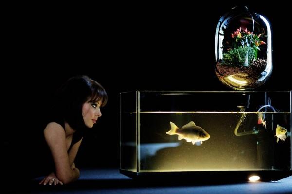 10 unusual aquariums for your living area hometone for Spacearium aquariums