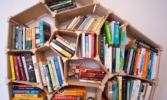 Design Your Own Generative Voronoi Bookshelf With A Web