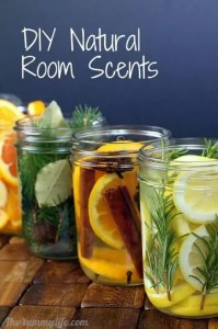 Room Scent Fresheners