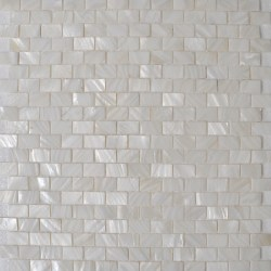 Small Crop Of Mother Of Pearl Backsplash