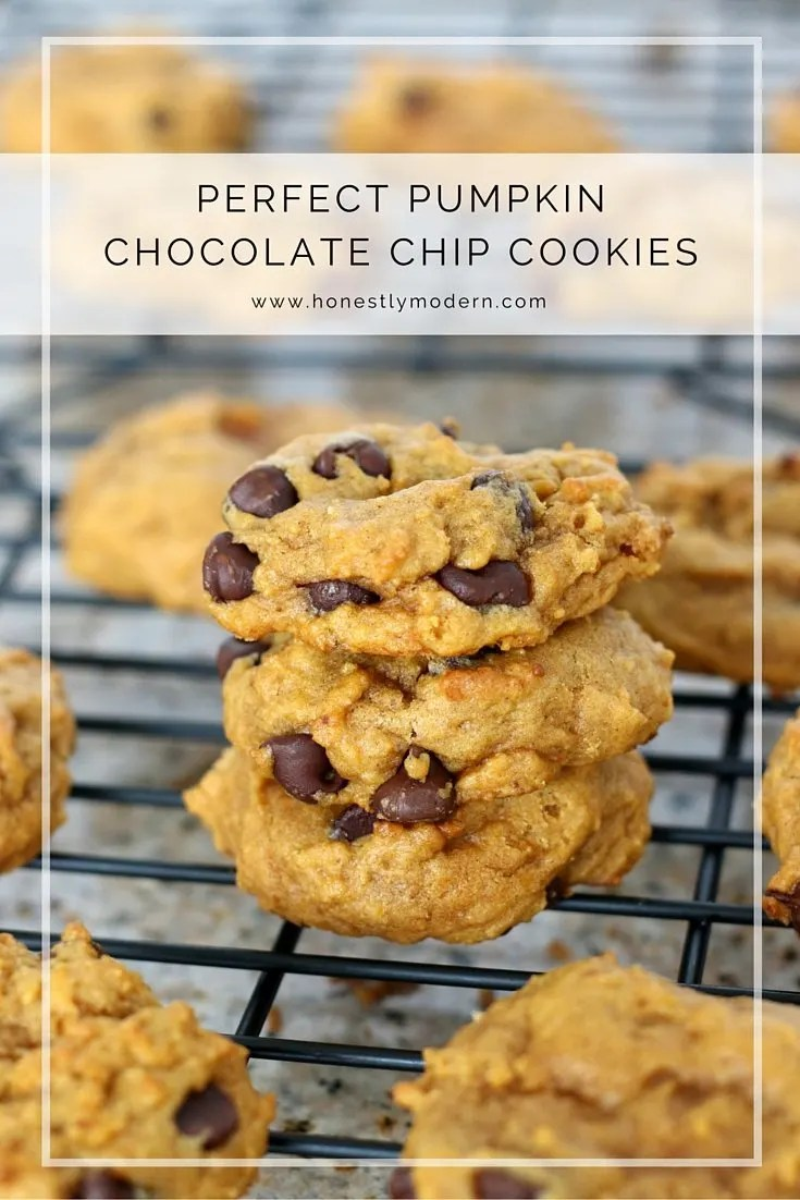 Soft and moist pumpkin chocolate chip cookies that everyone will love ...