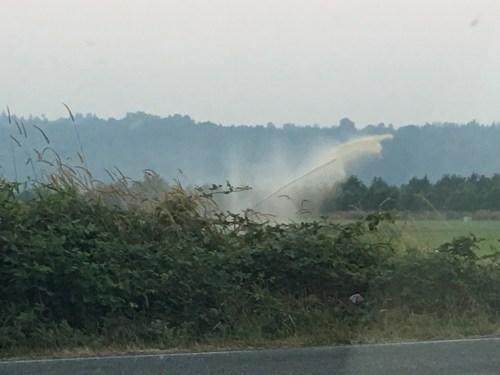 Sprinkler is hitting smoke and looking brown.