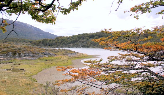 Coastal plains and windy rivers in Tierra del Fuego