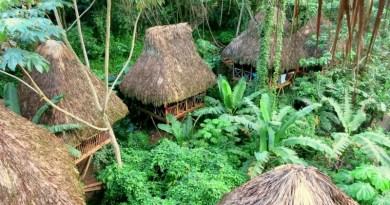 The Dominican Republic's Eco Escape