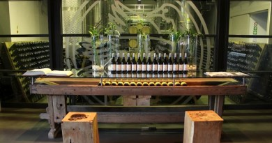Steenberg vineyards and wine cellar, South Africa