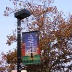 Palo Alto Downtown; Cafe 220 (Palo Alto, California)