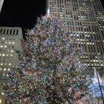 Christmas 2011!