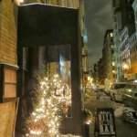 Galli | New York City