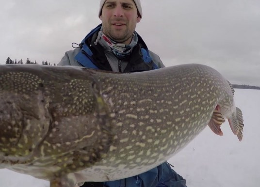 Ice Fishing for Giant Pike on Tip-Ups – Manitoba Species Spotlight