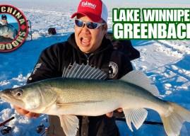 Lake Winnipeg Greenbacks on New Year's Day with Big China!