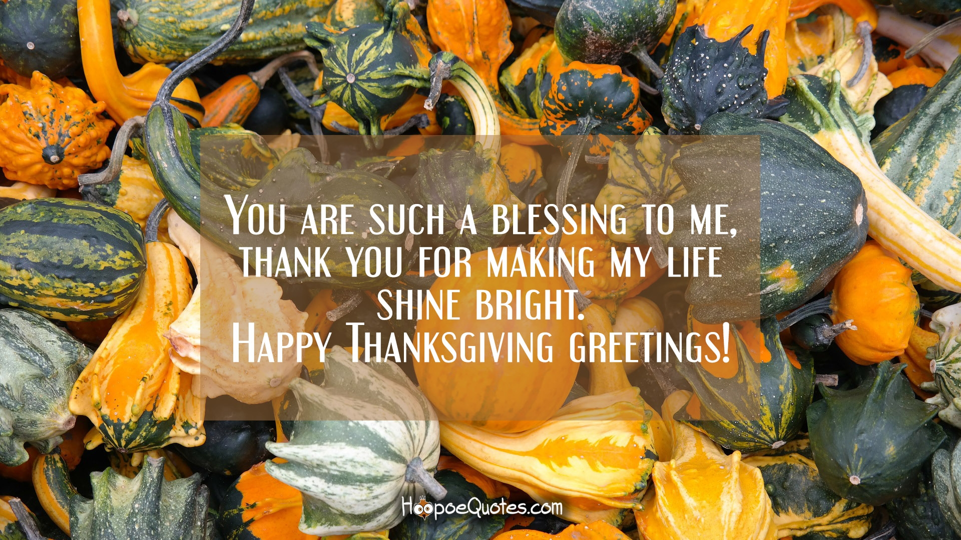 Fanciful You Are Such A Blessing To Thank You Making My Life Shine Happy Thanksgiving Messages Facebook Happy Thanksgiving Messages Business inspiration Happy Thanksgiving Messages