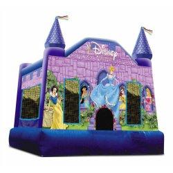 Small Crop Of Disney Princess Castle