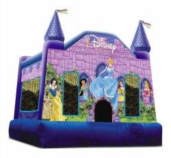 Small Of Disney Princess Castle