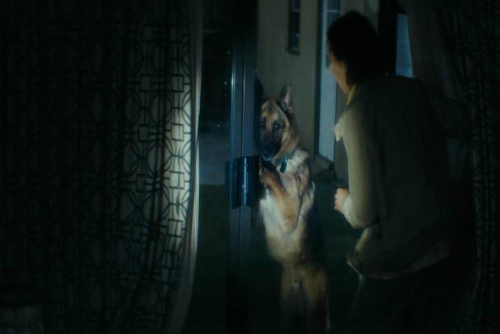 2. FTWD, ep. 3, the dog