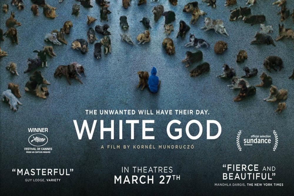 7. White God, poster