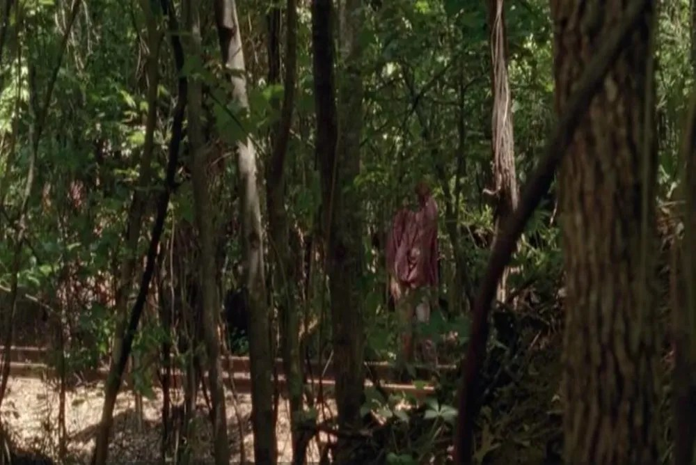 """Zombies in/as the forest: """"No Sanctuary"""" (s. 5)"""