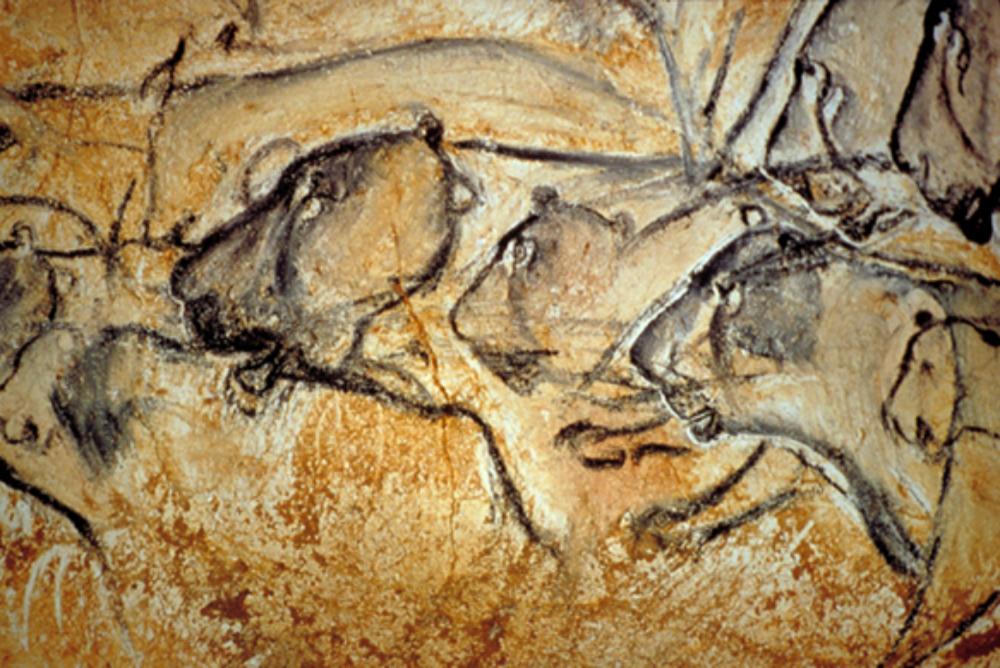 Lions at Chauvet Cave