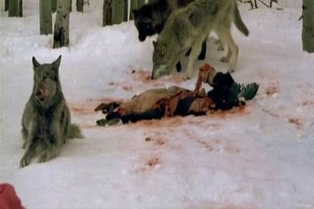 5. Frozen, wolves