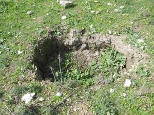 חפירות פיראטיות בתל דותן