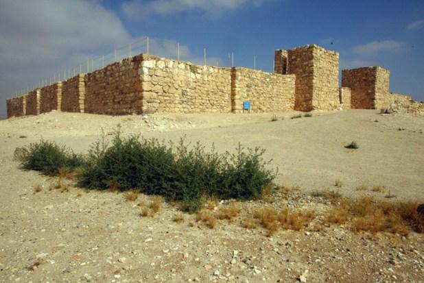 תל ערד - תל באר שבע-הר עמשא-תל ערד