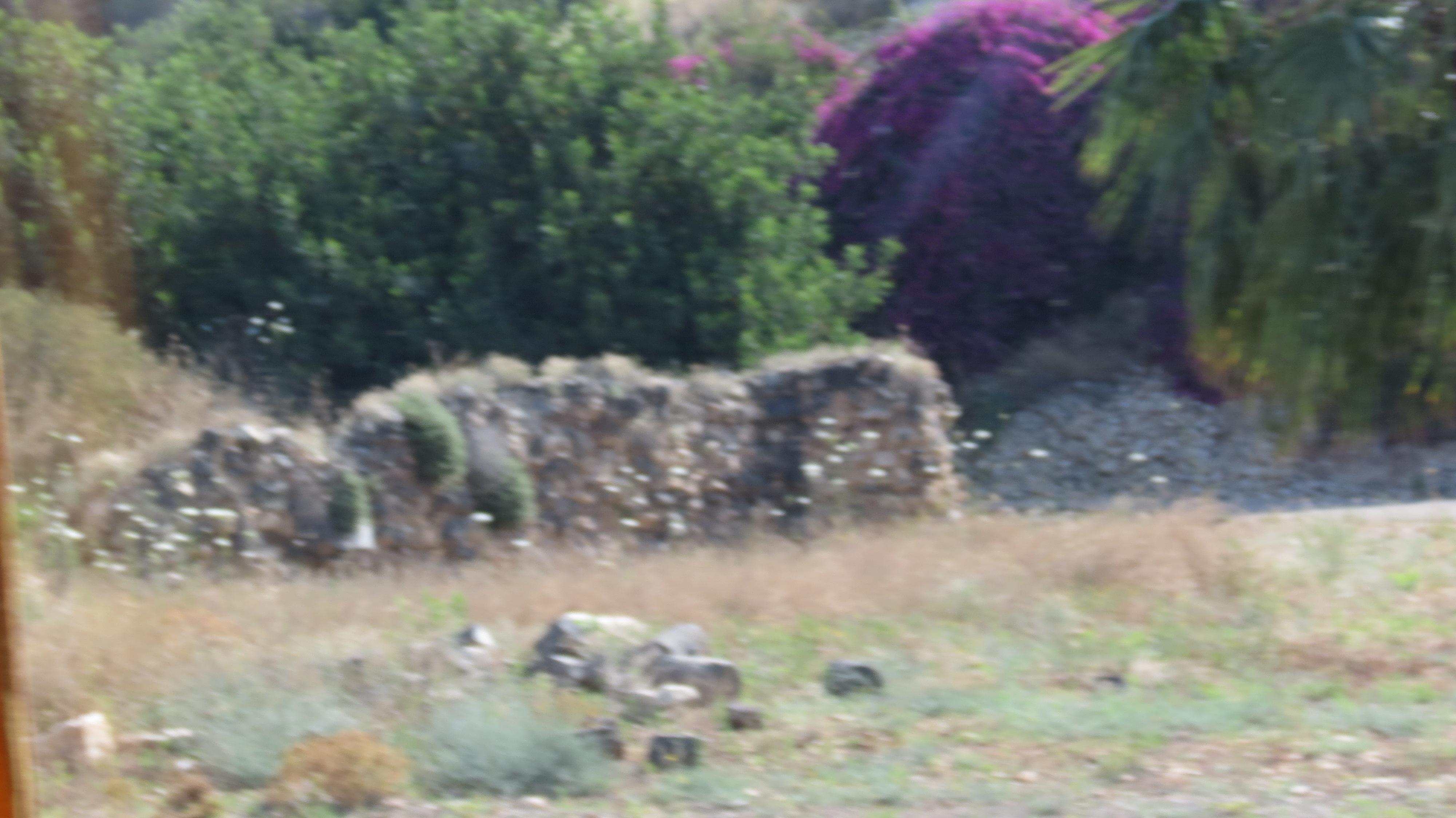 אתר ספיר - עתיקות בחצר אתר ספיר