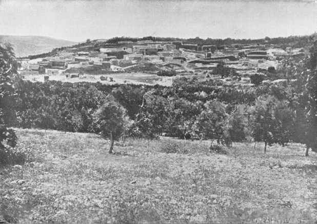 Cana of Galilee. Holy land photographed by Daniel B. Shepp. 1894
