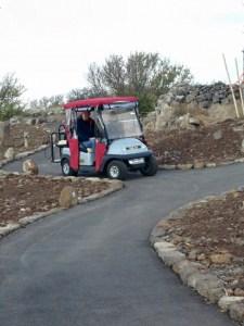 הנגשה והסעה - שירות קלנועית